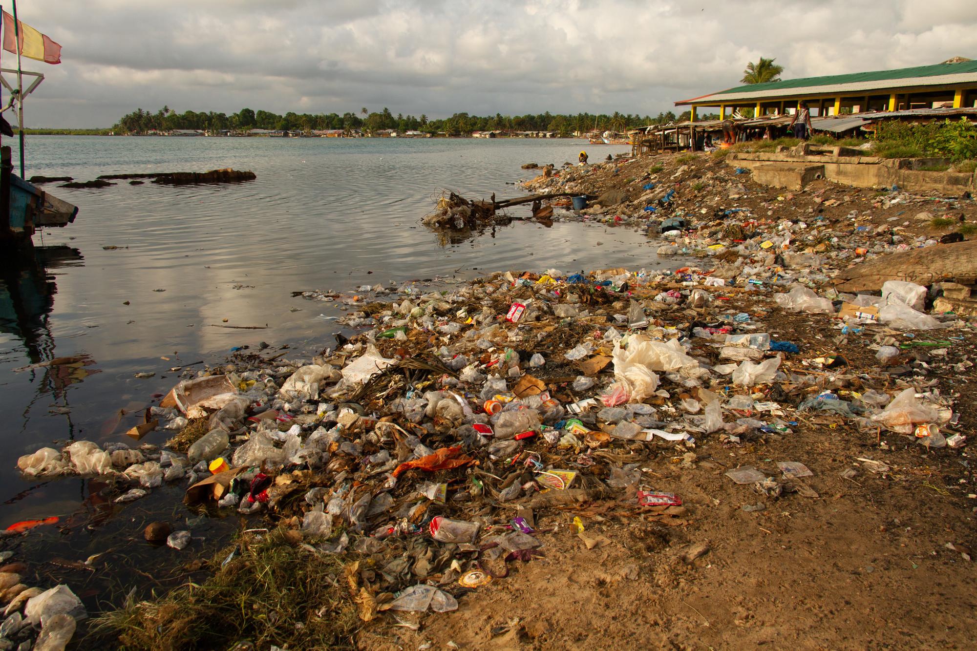 Plastic Promise