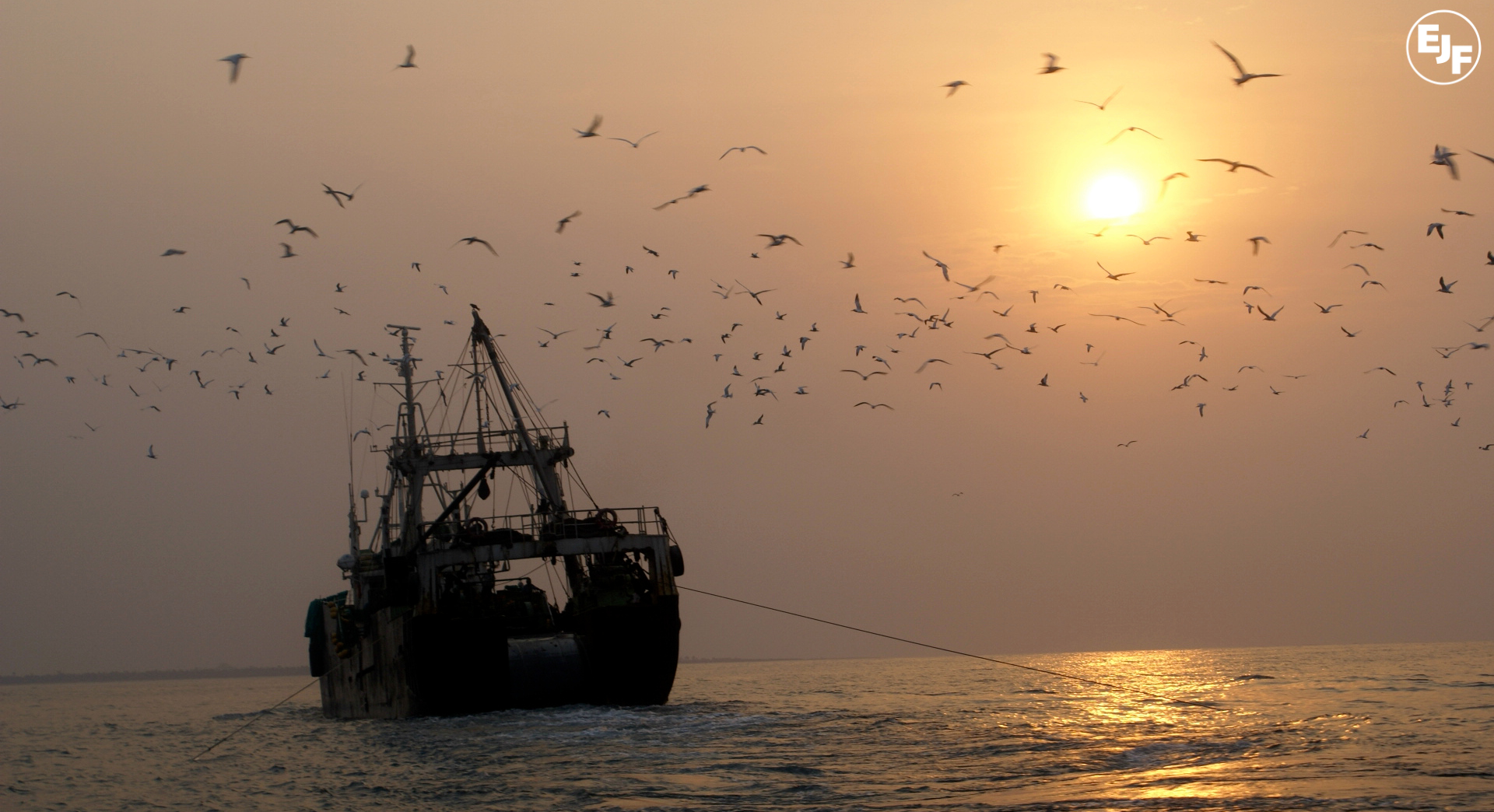 EU fisheries advisory body calls for mandatory IMO numbers for vessels catching seafood for the EU market