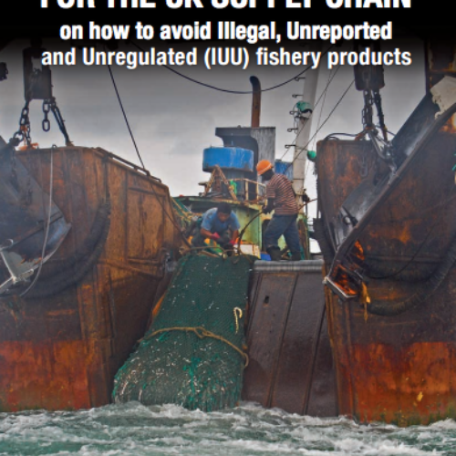 An Advisory Note for the UK Supply Chain on How to Avoid Illegal, Unreported and Unregulated (IUU) Fishery Products