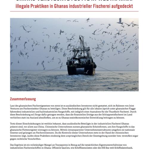 Chinas versteckte Flotte in Westafrika: Illegale Praktiken in Ghanas industrieller Fischerei