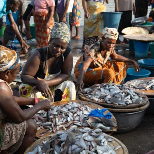 Involving women for sustainable fisheries