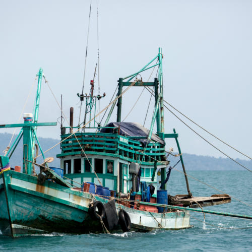 Building Ocean Health: Sharing experience to move towards sustainable fisheries management
