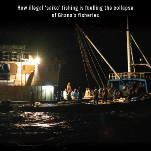 Stolen at sea: How illegal 'saiko' fishing is fuelling the collapse of Ghana's fisheries