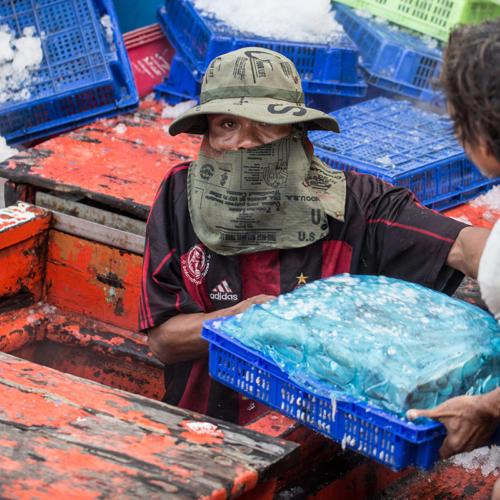 Combating seafood slavery