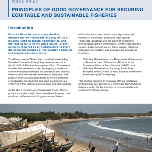 Principles of good governance for securing equitable and sustainable fisheries