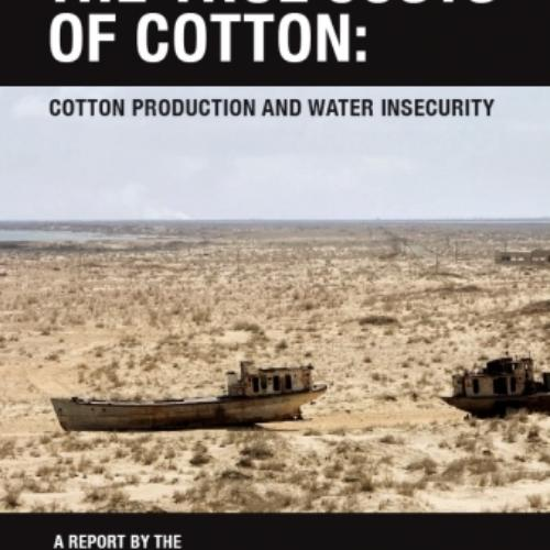 The True Costs of Cotton: Cotton Production and Water Insecurity