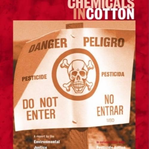 The Deadly Chemicals in Cotton