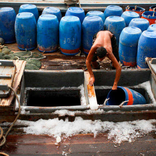 Thailand's Seafood Slaves