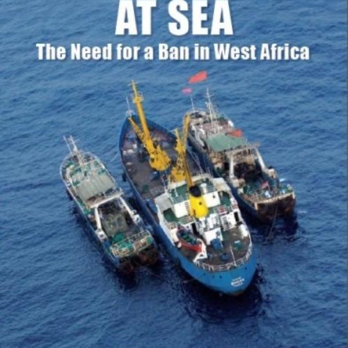 Transhipment at Sea: Briefing