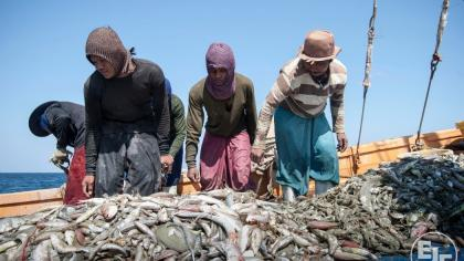 Thailand is first in Asia to ratify international standards for work in fishing industry