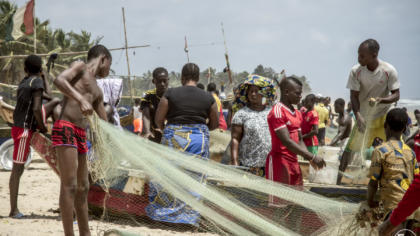 EJF's new shark and ray conservation project in Côte d'Ivoire