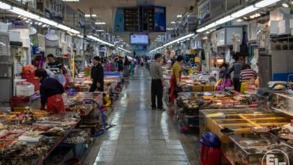 Seafood fraud common in Korea, DNA study reveals