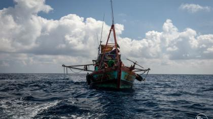 Out of the Shadows: Transparency is vital for legal, sustainable, ethical fisheries