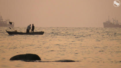 Teach a man (not) to fish: EJF's work with coastal communities in West Africa