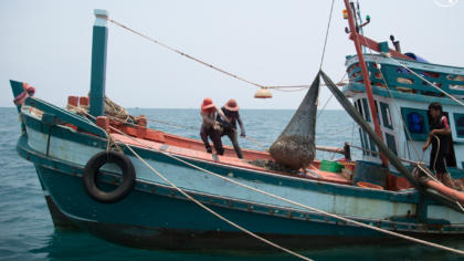 New industry guidance helps French companies and retailers to avoid illegal fishing