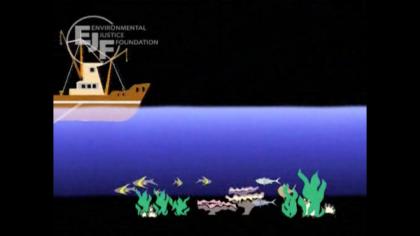 Stop trawling - JALA