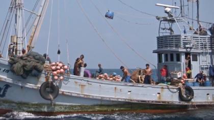 Slavery at Sea