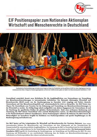 EJF Positionspapier zum Nationalen Aktionsplan Wirtschaft und Menschenrechte in Deutschland