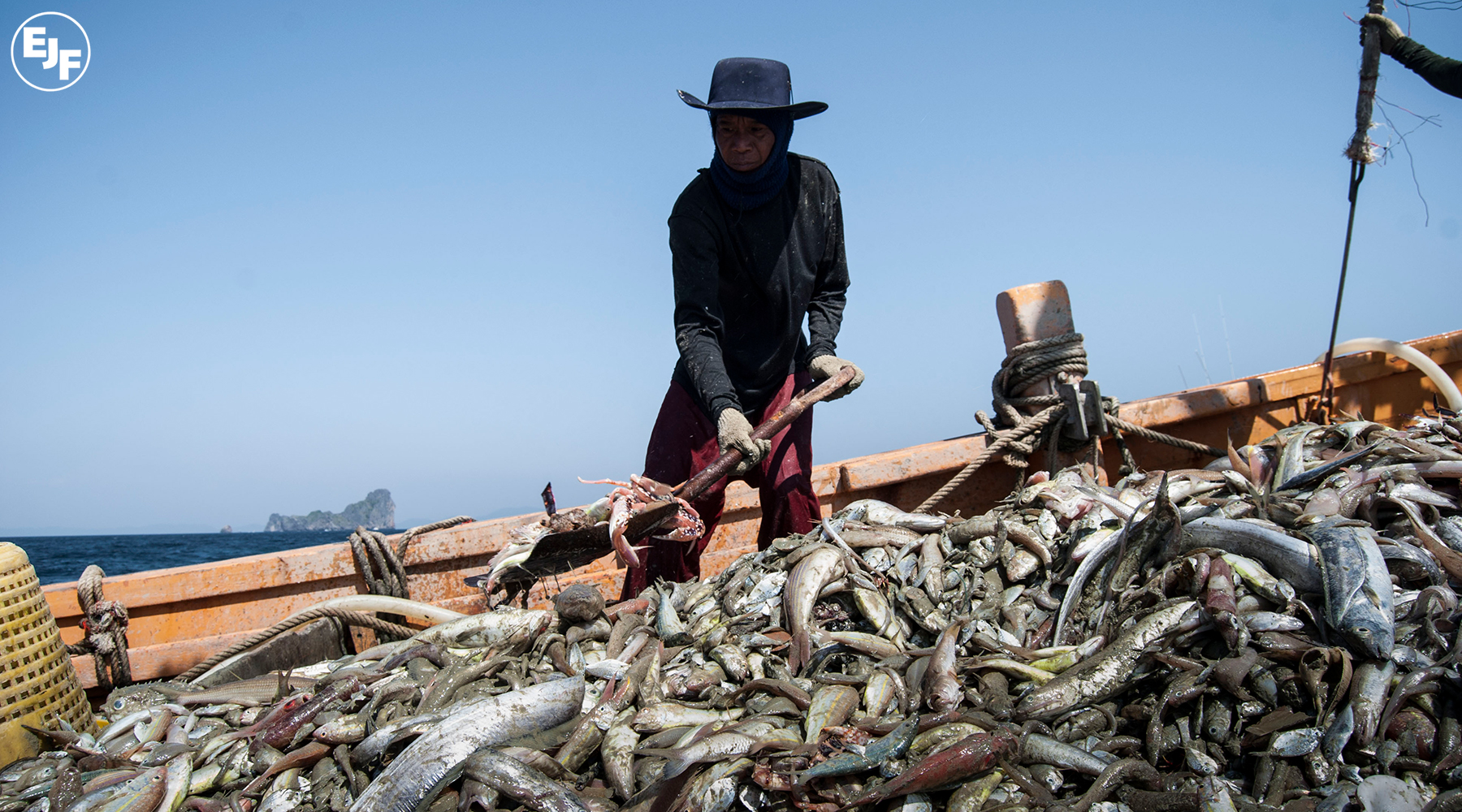Overfishing and pirate fishing perpetuate environmental degradation and modern-day slavery in Thailand