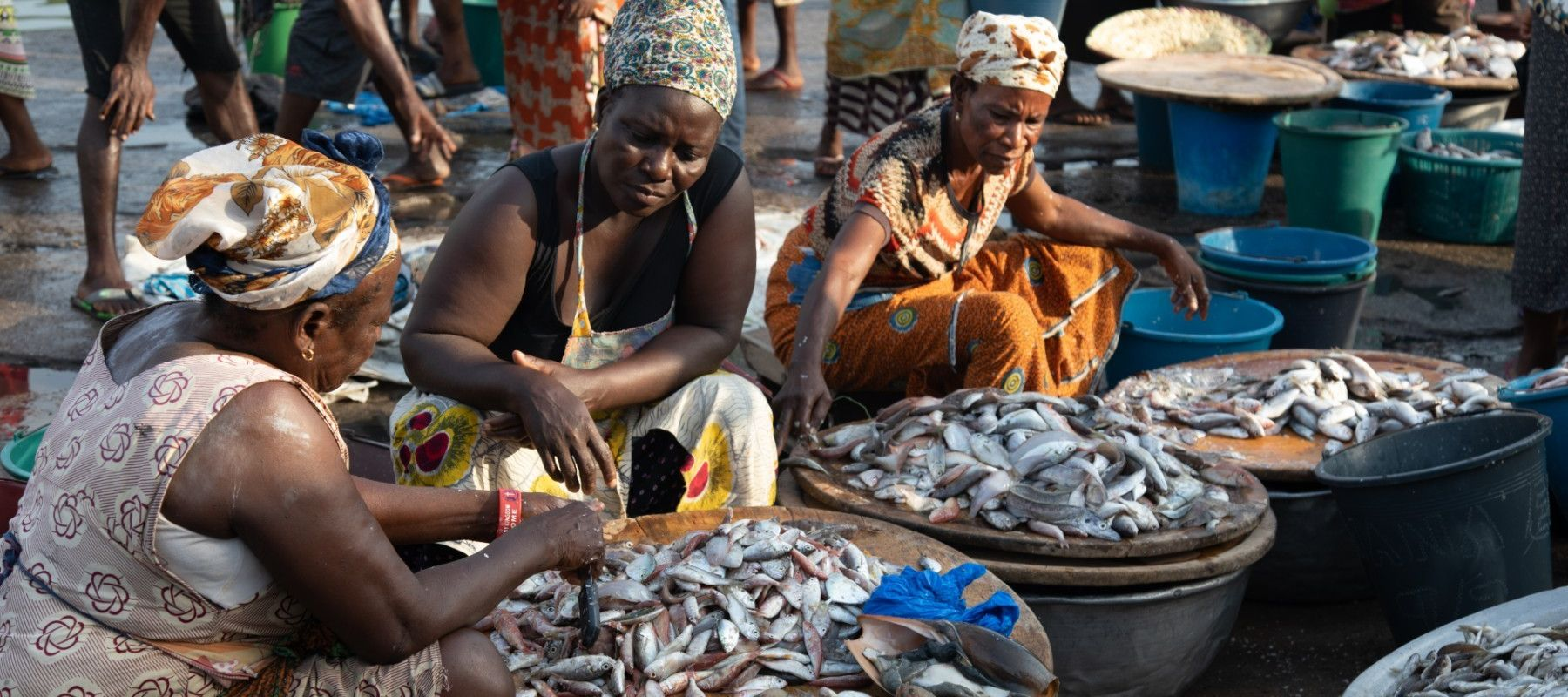 Ghana Women In Fisheries