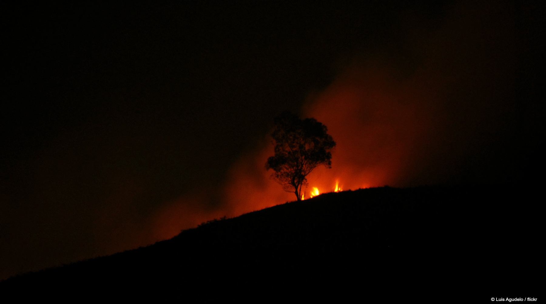 Climate Alert nr 2: Playing with fire