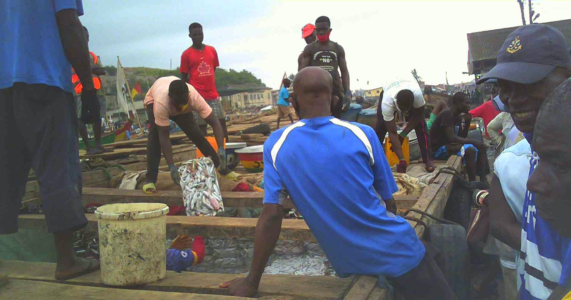 Illegal saiko fishing continues openly in Ghana despite government assurances