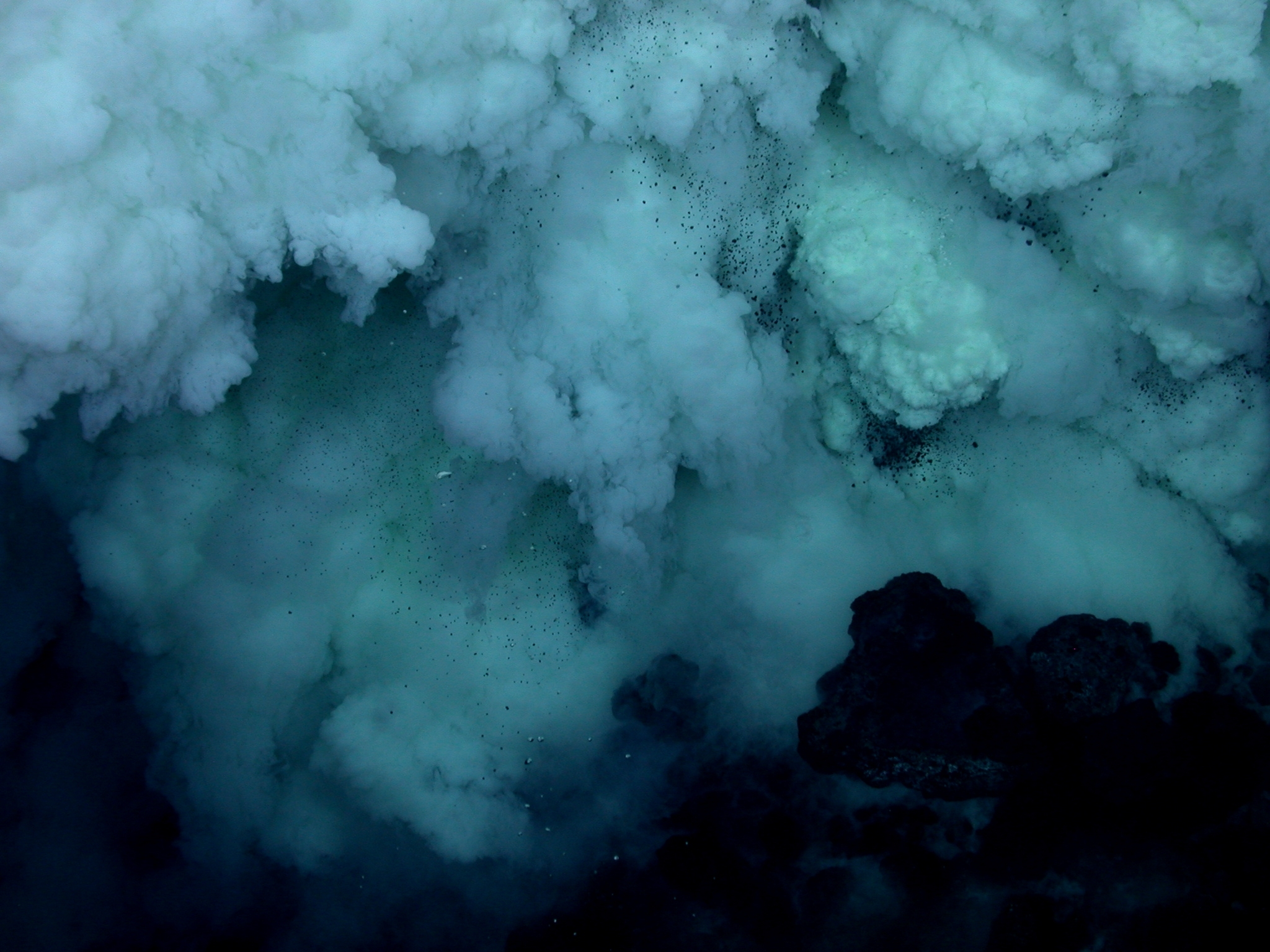 Deep sea mining must be stopped to prevent incalculable damage to humans and wildlife