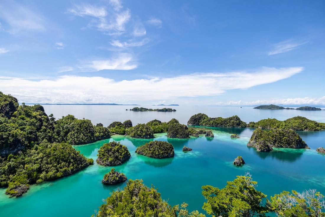 Meeresschutz ist der Schlüssel für ein stabiles Klima und eine nachhaltige Wirtschaft