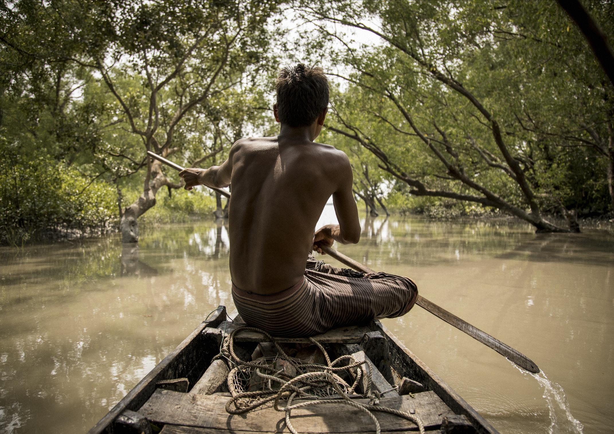 A Fisherman In The Sundarbans