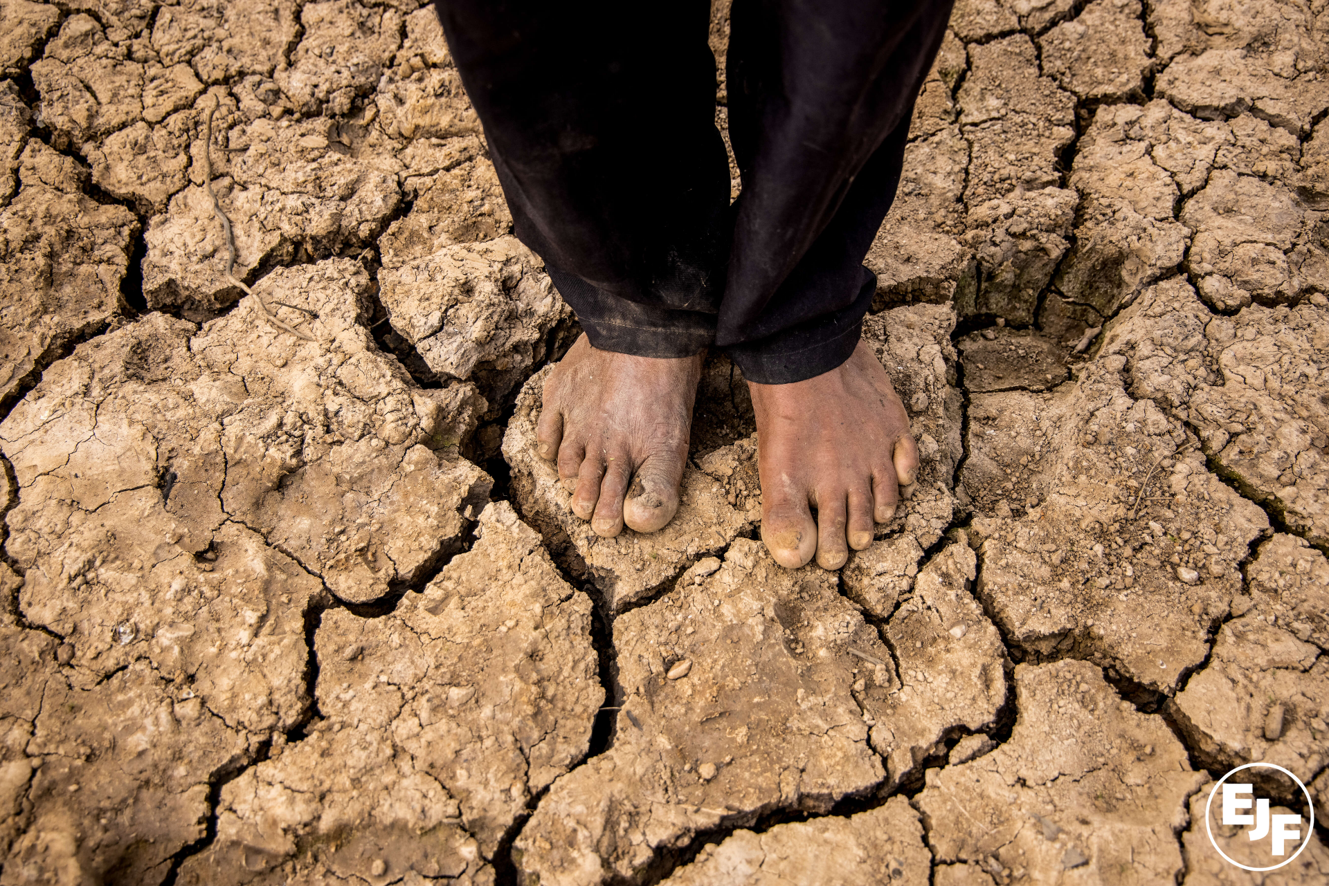 No more delays: EJF comment on IPCC Sixth Assessment Report