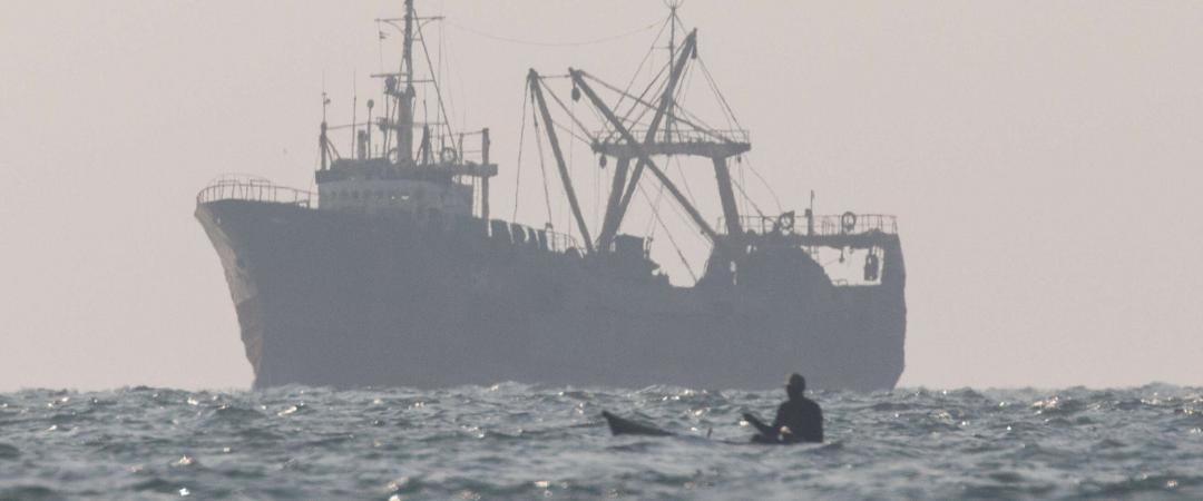 Wie illegale Fischerei gestoppt werden kann