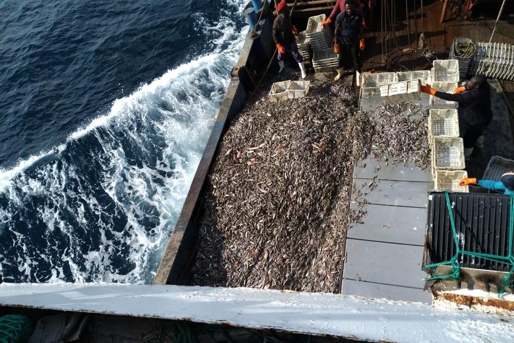 Ghana losing millions of dollars as Chinese fishing trawlers hide ownership