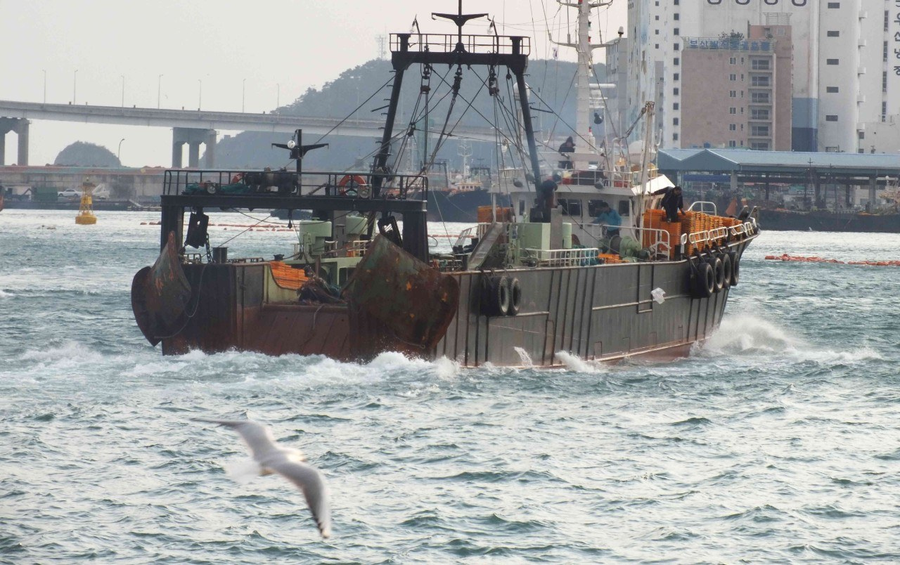 Abuse of migrant workers and illegal fishing on Korean vessels exporting to the EU