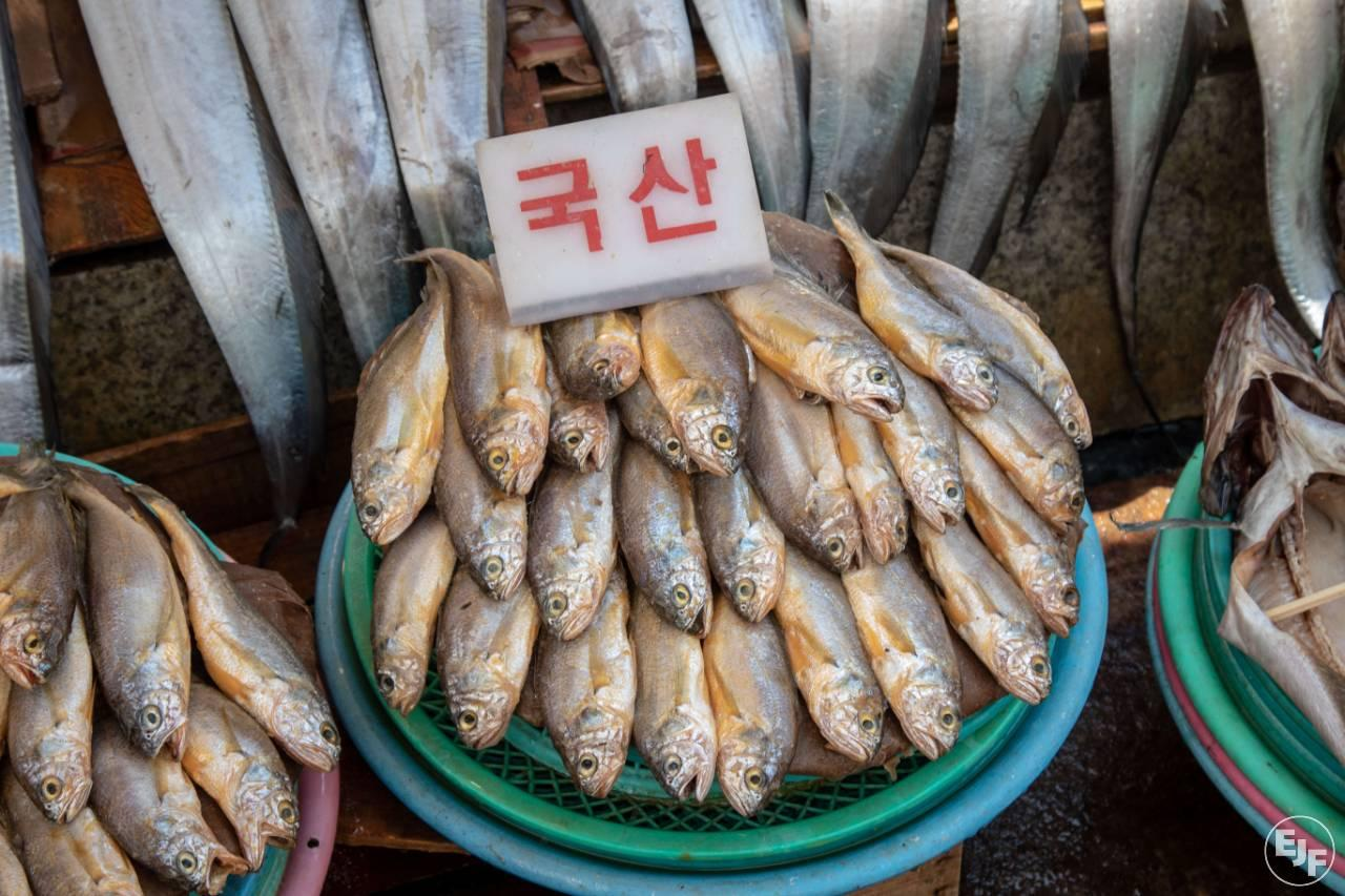 South Korea's fisheries laws improve, but vigilance is needed