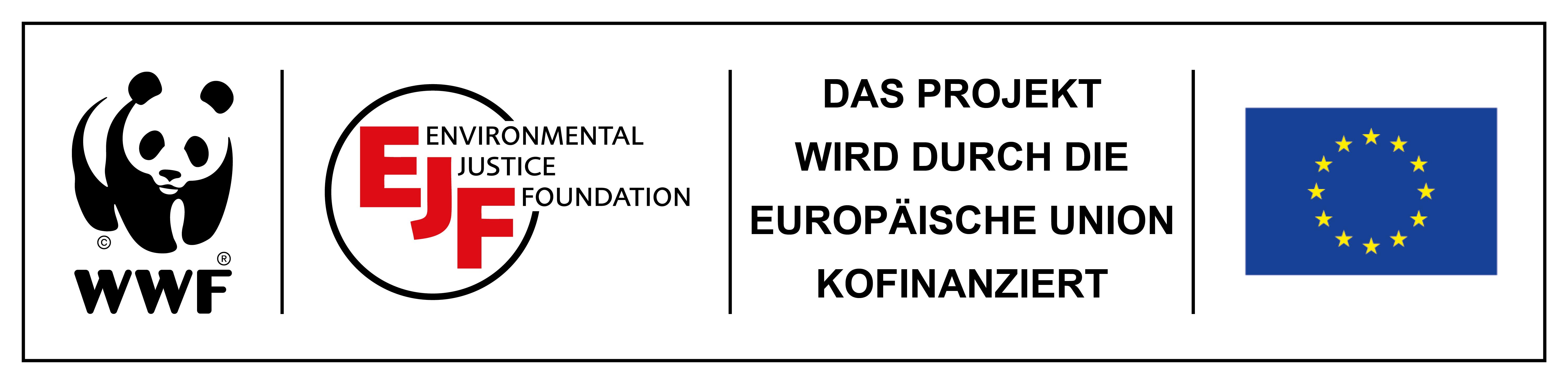Logo FF2