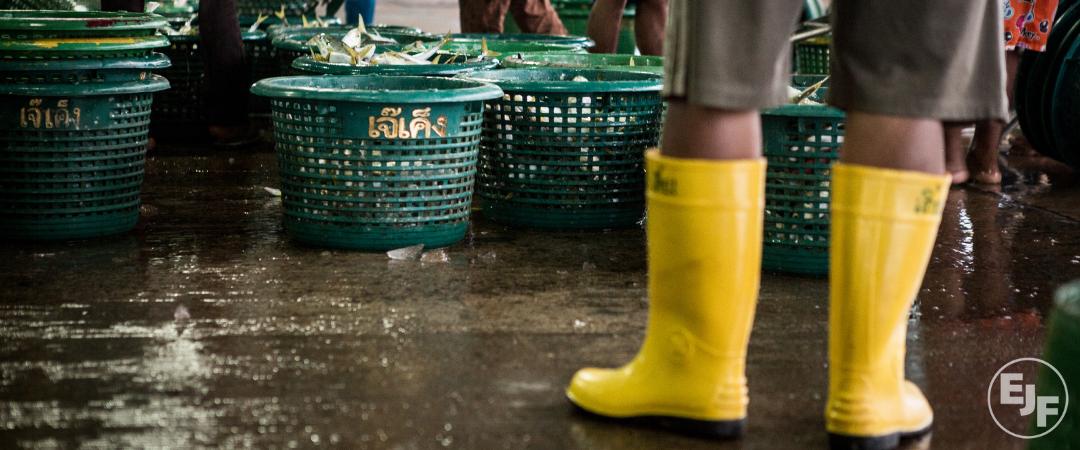 Menschenrechtsverletzungen in der Fischereiindustrie enthüllt