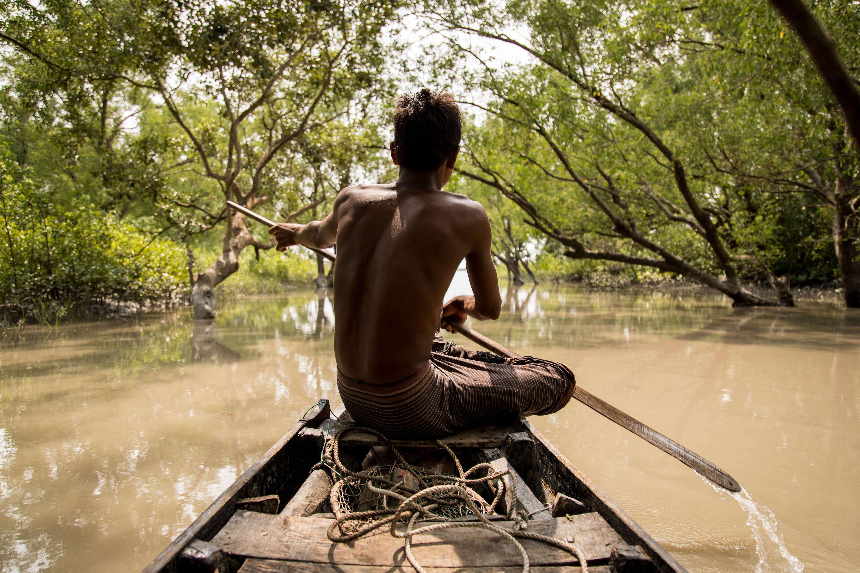 Defending the world's life-giving mangroves