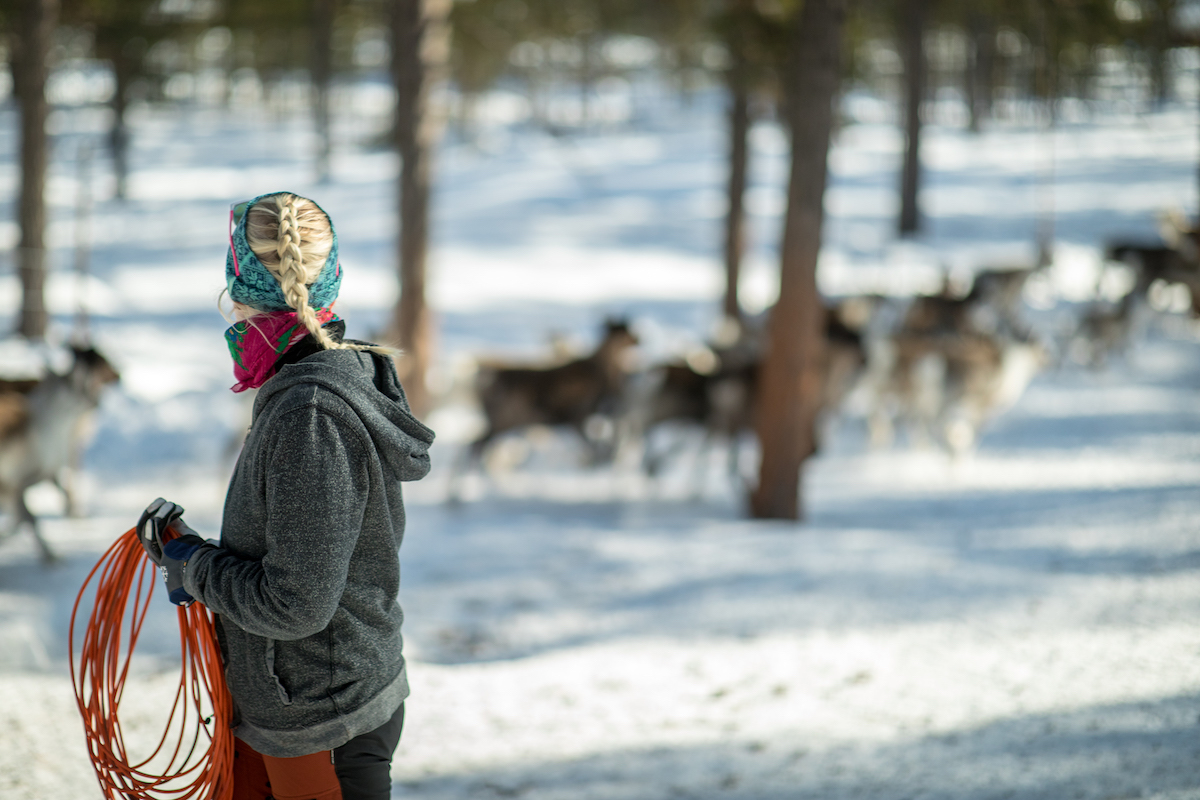 Show solidarity with the Sami to combat climate change
