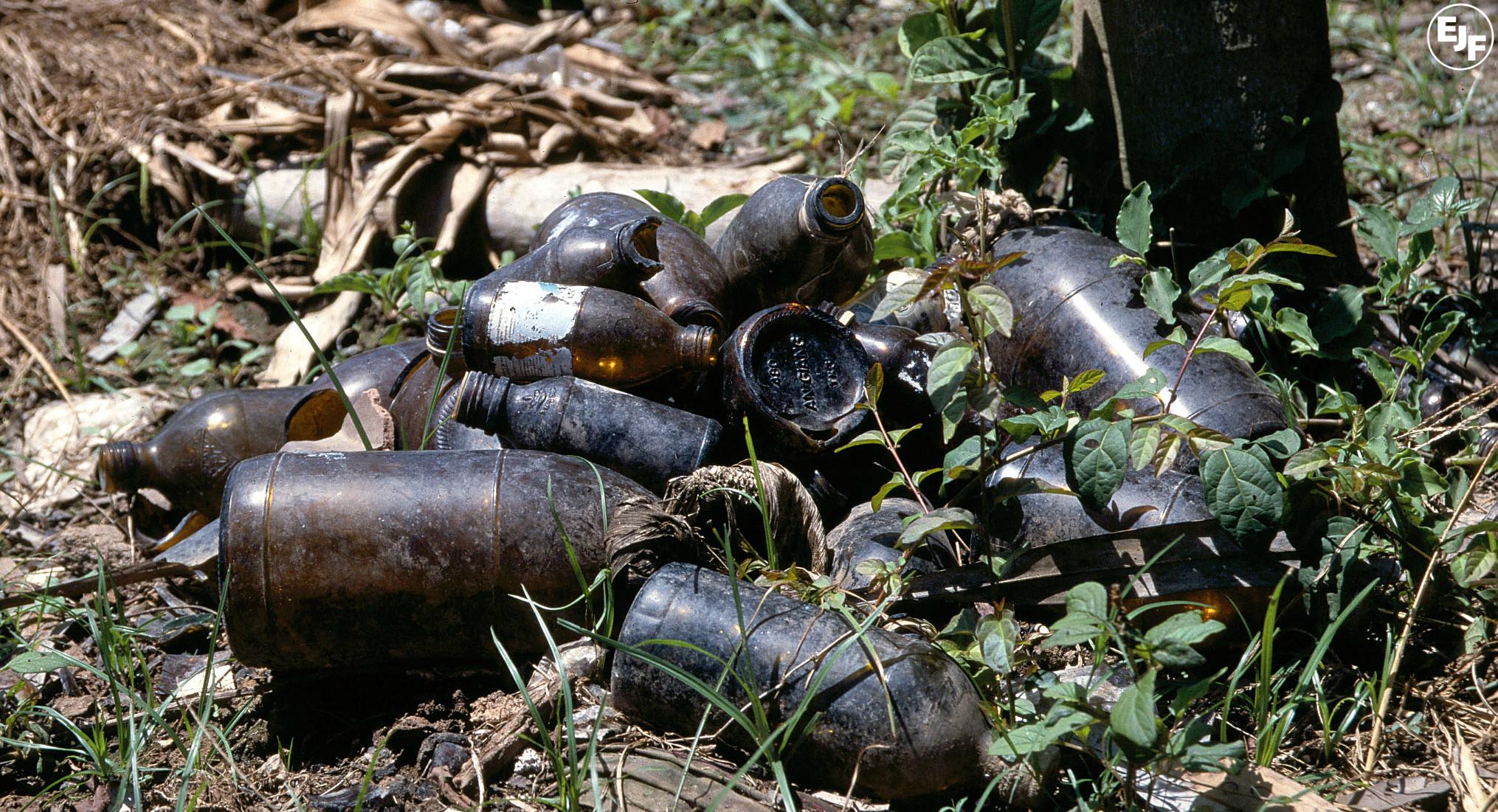 Paraguay bans endosulfan