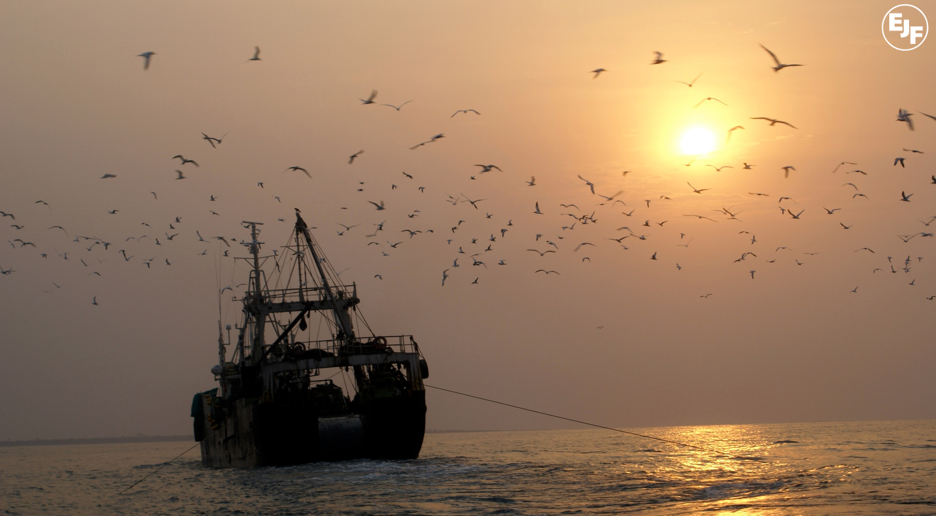 Press Release: Spain announces law to fight pirate fishing
