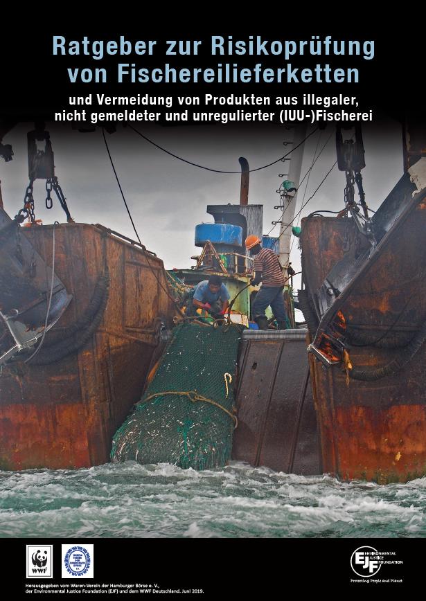 Ratgeber | Risikoprüfung von Fischereilieferketten
