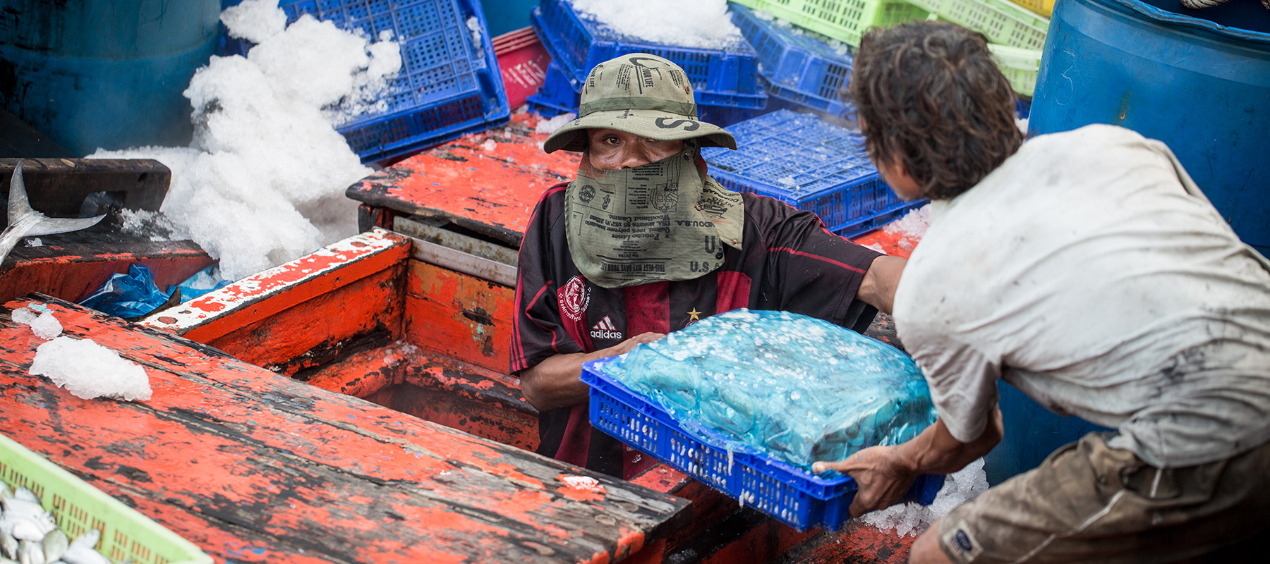 Combating seafood slavery