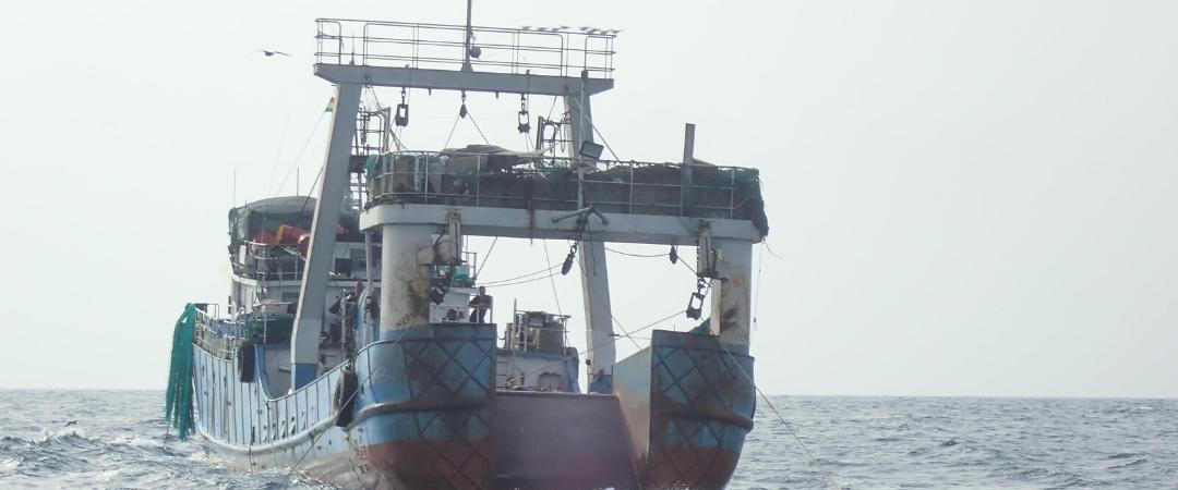 Illegale Fischereiprodukte aus Westafrika bahnen sich Weg in die EU