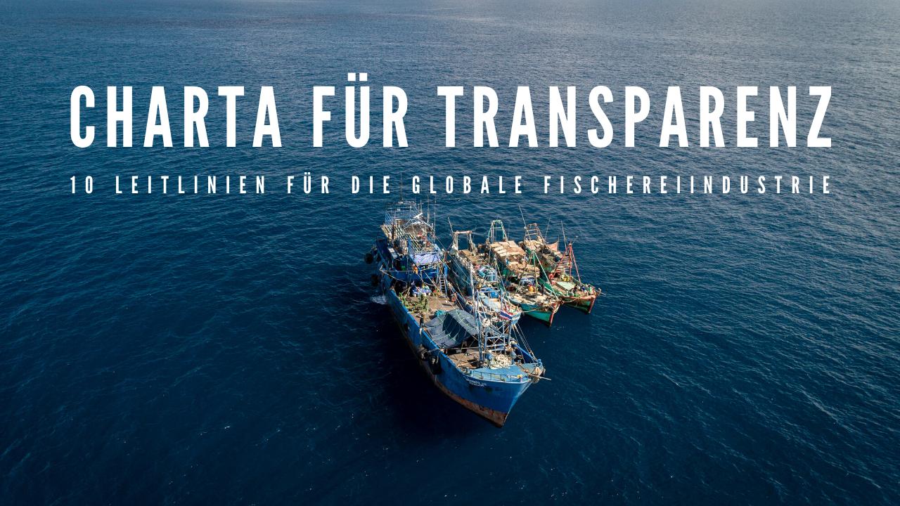 Transparenz in der globalen Fischereiindustrie: Zehn Leitlinien