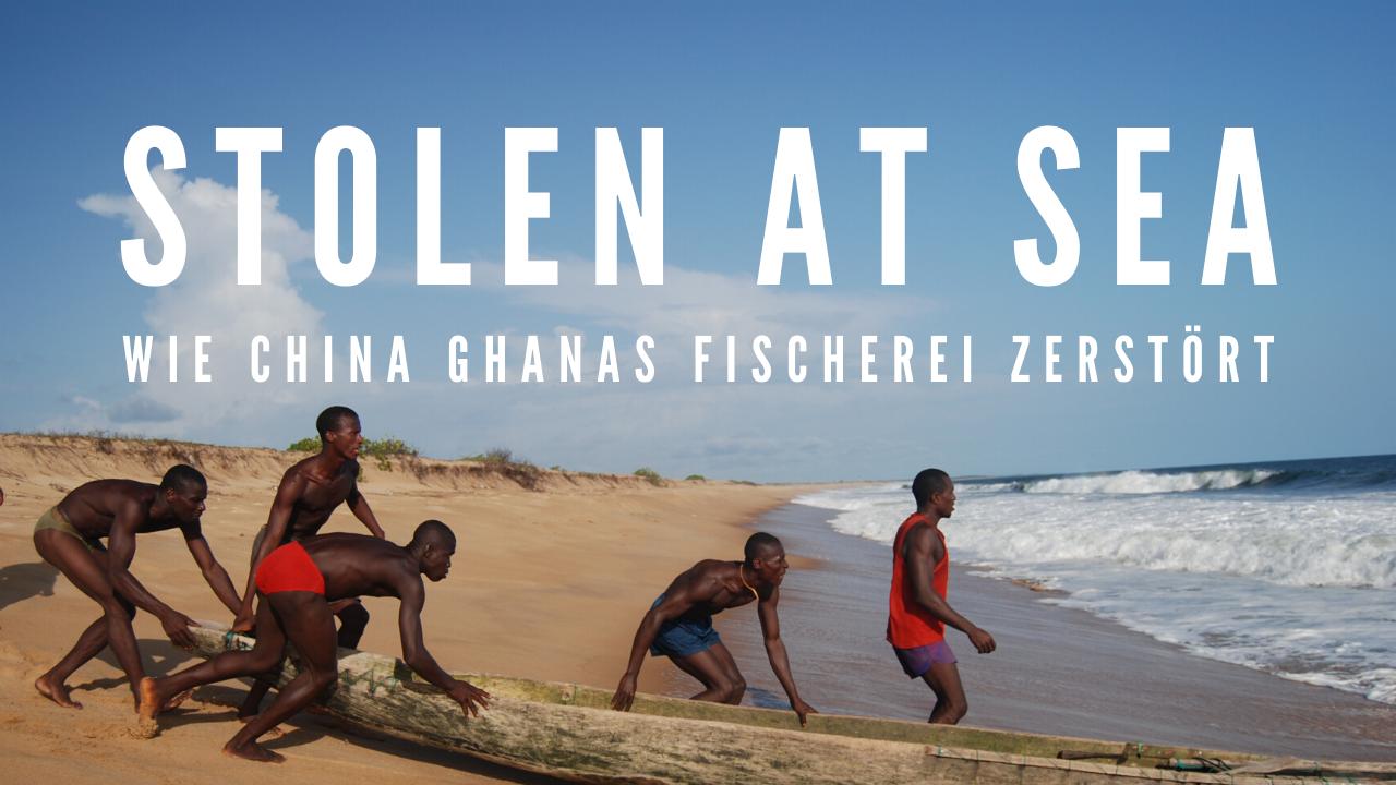 Stolen At Sea | Wie China Ghanas Fischerei zerstört