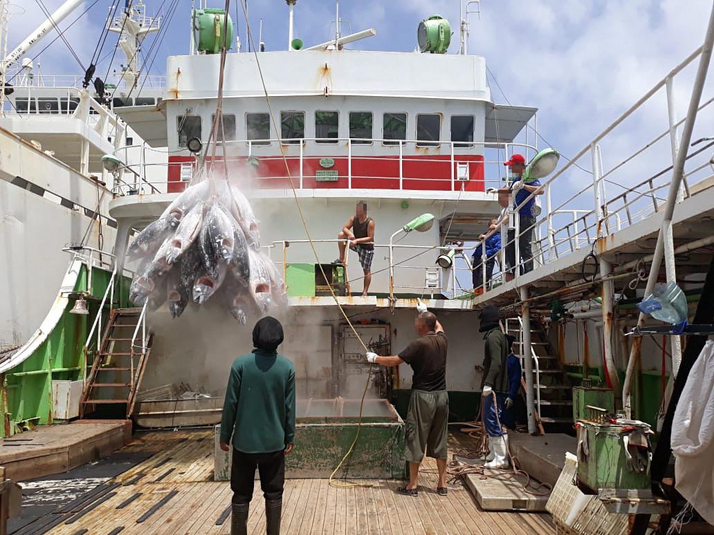 奴隷労働・違法操業漁業による水産物の日本市場への混入の可能性