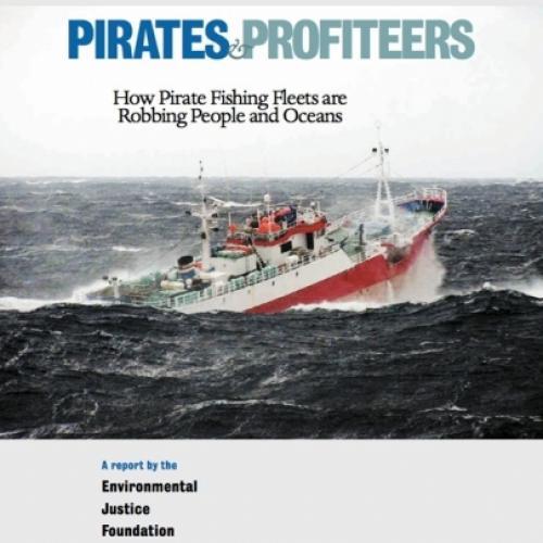 Pirates & Profiteers