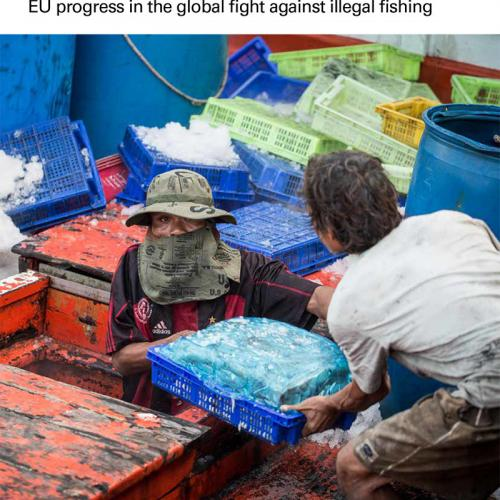 The EU IUU Regulation: Building on success EU progress in the global fight against illegal fishing