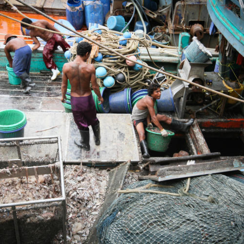 EJF investigation reveals human rights abuses in Thailand's fishing industry