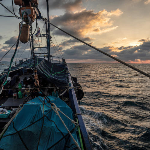 EJF's ten principles for global transparency in the fishing industry launched